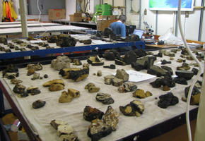 Rocks in the Lab