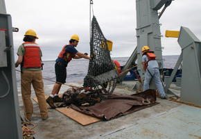 Emptying the Dredge Basket
