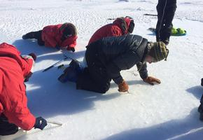 Sea Ice Training: digging anchors into the sea ice