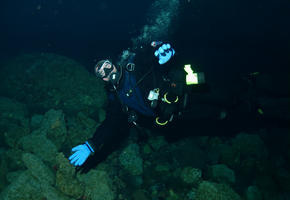 Hubert Diving at the MCM Jetty